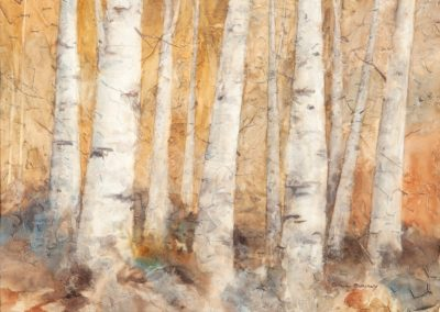 """Autumn Birches"" 18"" x 22"" watercolor by Bill Baily"